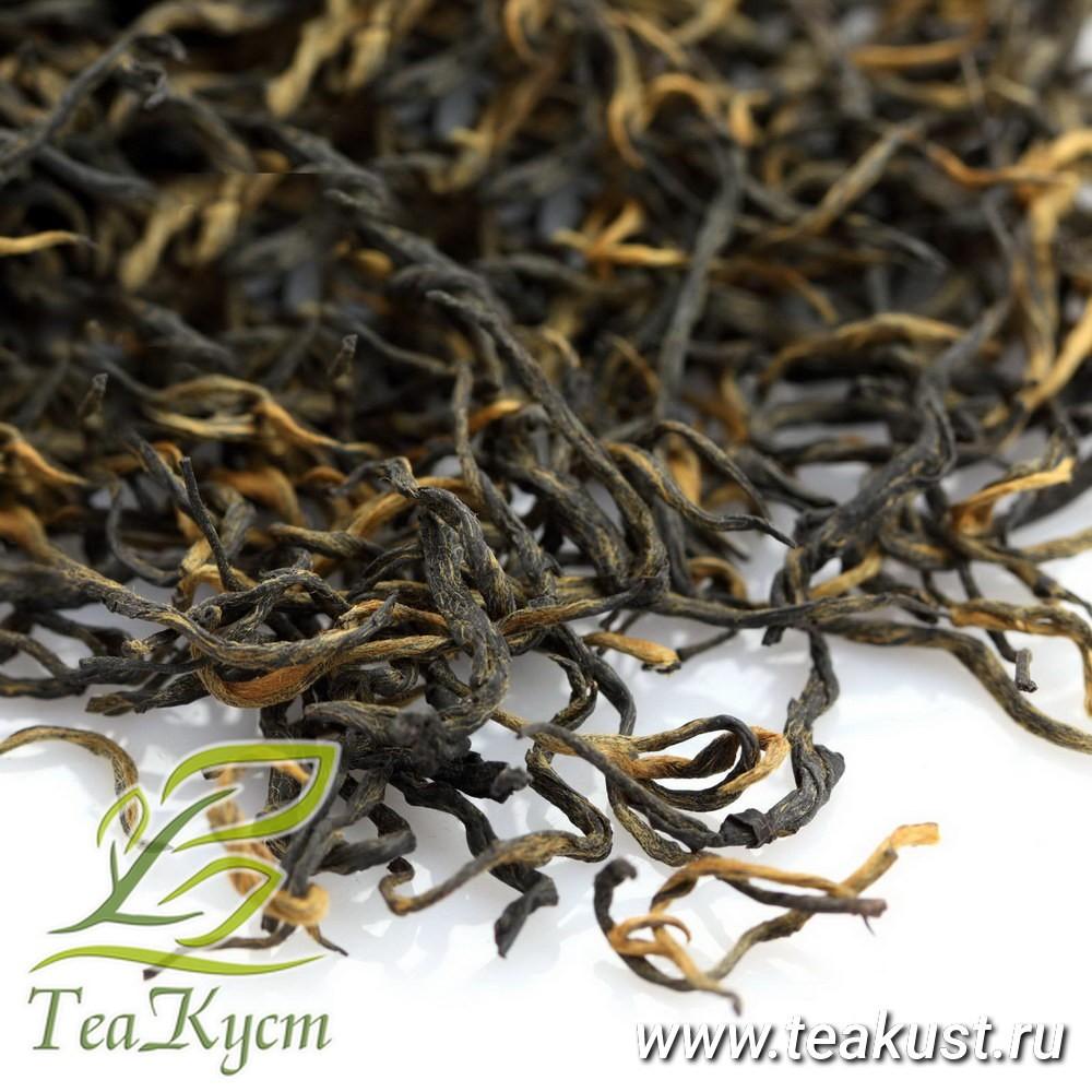 Цзинь Цзюнь Мэй состоит из мельчайших чайных почек, в 50 граммах содержится 5000 почек