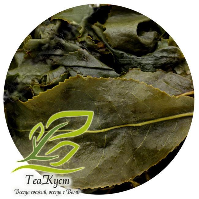 Раскрывшийся лист Улуна с Морозного Пика Дун Дин