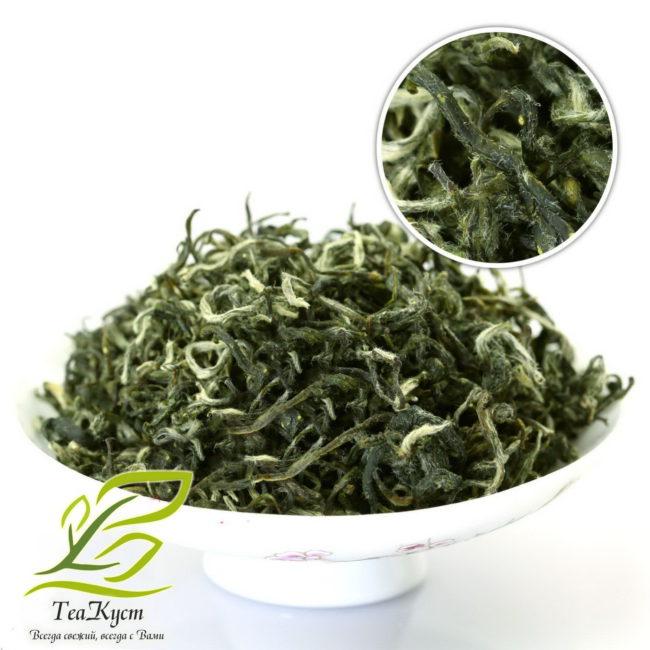 Зелёный чай СиньЯн МаоЦзянь (Ворсистые вершины Синьянь) из Китая