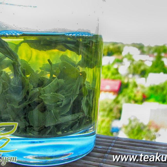 Зелёный чай Джунджак заваривается в стакане