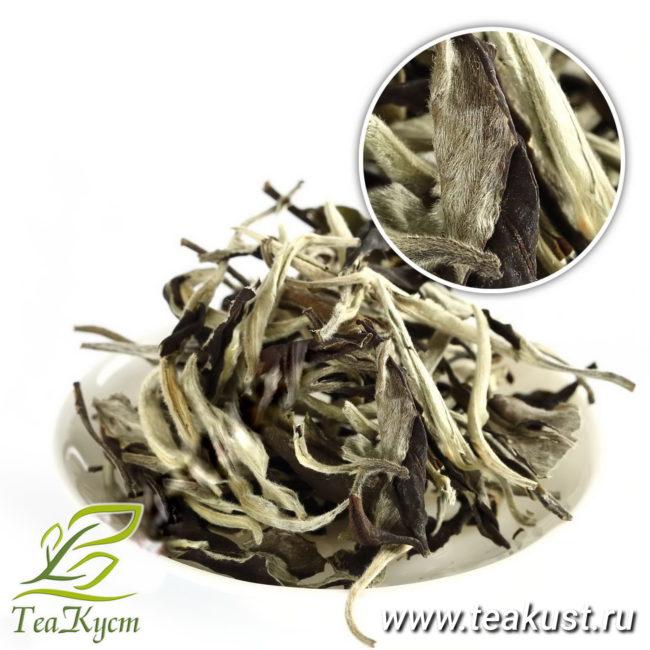 Почки Пуэра Белый Лунный Свет - Белый Китайский чай EQ