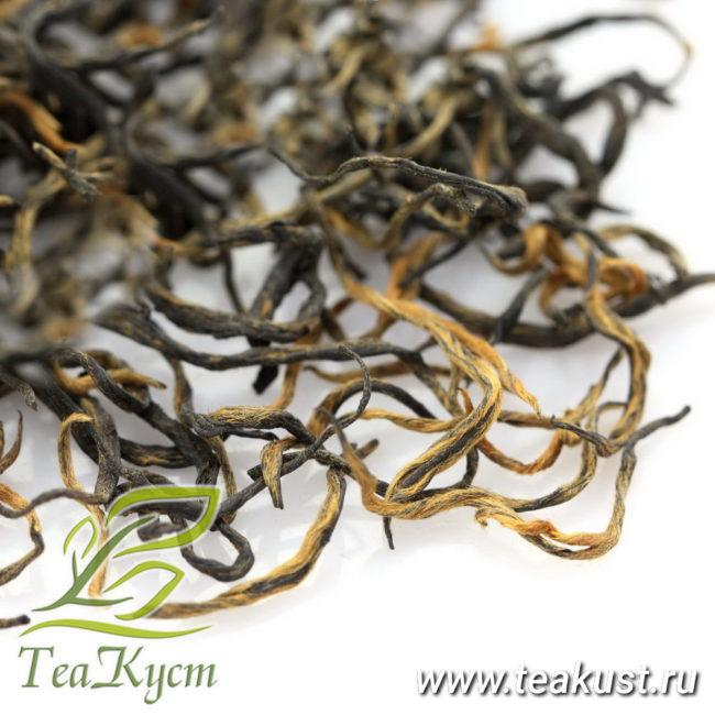 В чае Цзинь Цзюнь Мэй преобладают почки золотого цвета