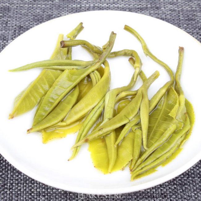 Заваренные листочки зелёного чая Юньнань Билочунь